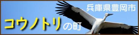 「コウノトリの舞う空の下で農業ってカッコイイ!~兵庫県豊岡市~」