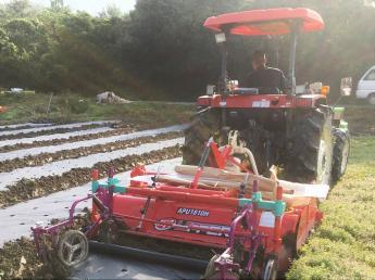 「日本一のキャベツ生産農家」を目指し周年栽培をおこなっています!独立支援にも積極的な若いスタッフが活躍する農園で一緒に農業しましょう♪