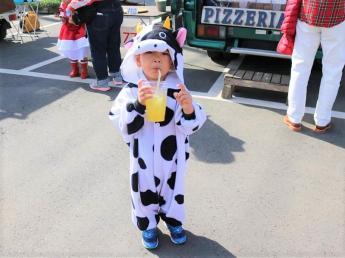《急募》即日勤務可能な方大歓迎 酪農も肉牛生産も学べる牧場です☆ 世代交代した30代の代表と一緒に牧場を盛り上げていきましょう!