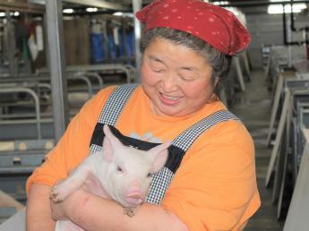 「健康が第一!」 豚の健康を考えた養豚場でお仕事をしませんか? 未経験の方も大歓迎です。★社会保険完備・手当充実