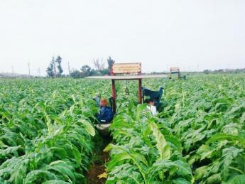 =限定3枠!=自然輝く伊江島で農業を経験してみませんか? フレンドリーな家族がお待ちしています♪\Wi-Fi付き寮あり/