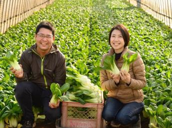 農業を稼げる産業に!未経験OK!若い職場で、地域で一番を目指します!農業界を盛り上げてくれる若い仲間を募集しています