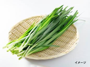 「想い」 それが私たちのキーワードです。 関わる全ての方々への感謝を大切にしています\宮崎で野菜を作りませんか/