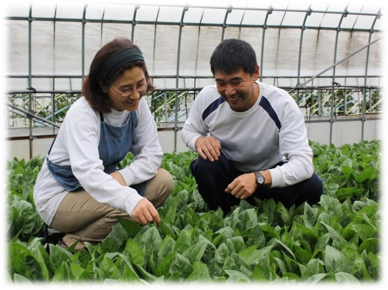 「担い手支援日本一」を掲げた、全国トップクラスの支援制度が魅力の山口県で、就農への一歩を踏み出してみませんか?
