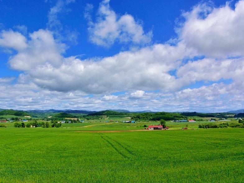あなたの理想の農業を一緒に描きませんか?