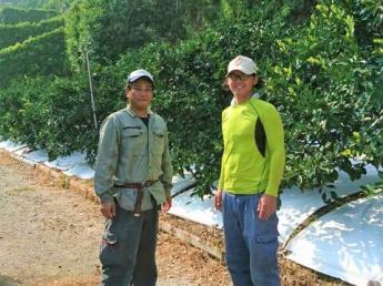 近隣に温泉施設あり♪シェアハウスで仲間と共同生活しながら短期アルバイト!〈Wi-Fi完備〉みかん収穫作業や軽作業のお手伝いをお願いします!