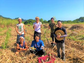 貴重な自然を有することから、島全体が国立公園に指定されている西表島で、春まで働いてみませんか?