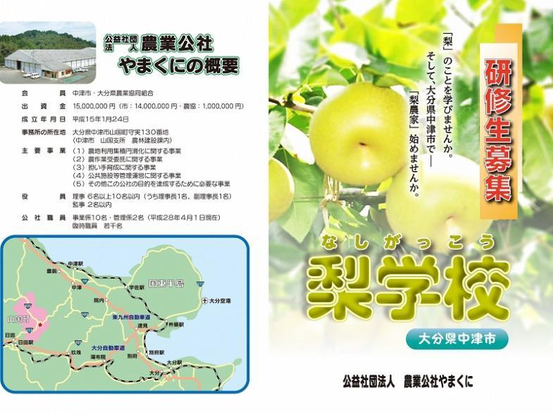 《研修生募集!》果樹で新規就農するなら中津市へ!年間を通じて温暖な気候の中津市で梨を栽培してみませんか?