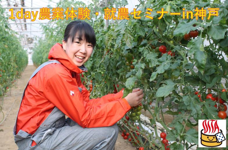 農業に興味のある関西圏の皆様。就農の第一歩は農業体験から!プロ農家の元で農業体験と就農セミナーを開催します!