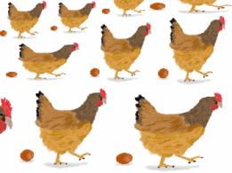 <span>三崎雇用促進協議会</span>愛媛県 かんきつの生産・販売