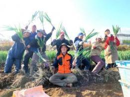 <span>日笠工業株式会社</span>香川県 稲作、小麦、農作業受託